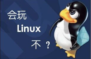 Linux环境变量作用顺序